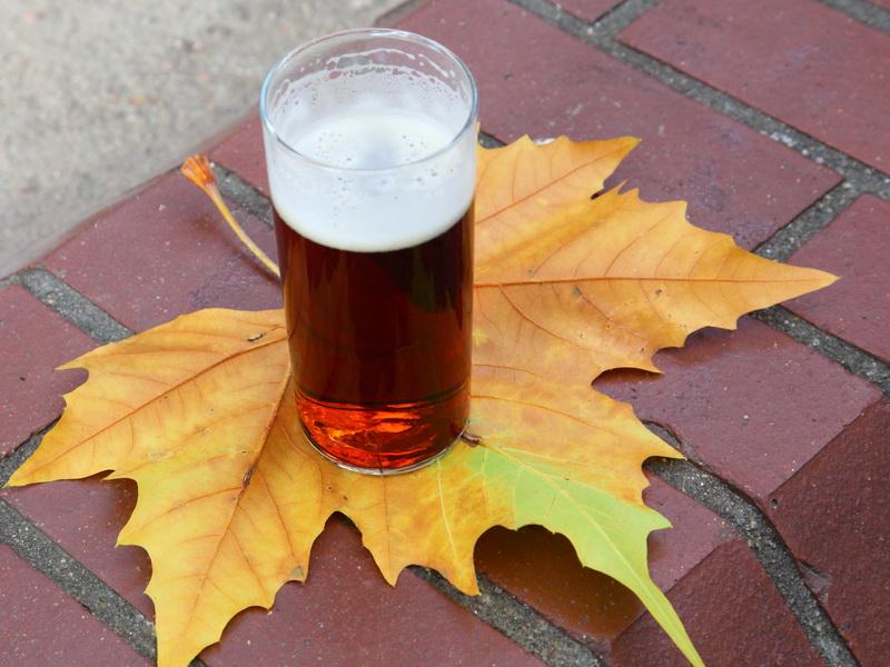 Пиво перед сдачей анализа?