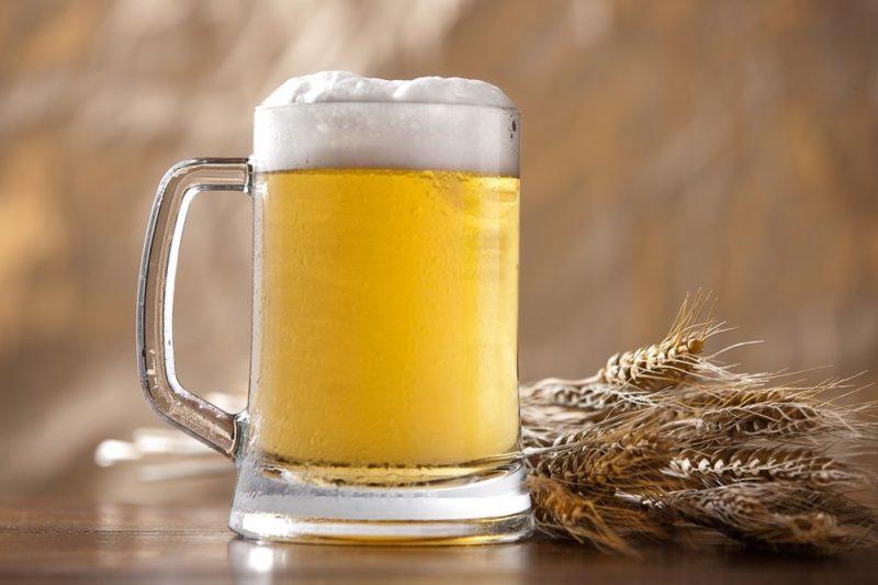 Пиво полезно