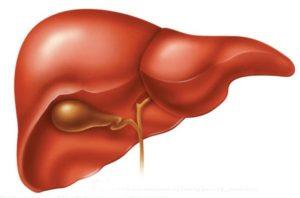 Причины, симптомы и лечение печеночной энцефалопатии