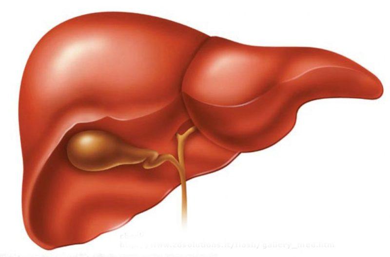 Печеночная энцефалопатия симптомы и прогнозы